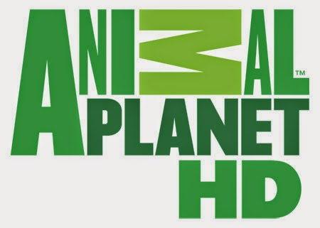 Animal Planet TV HD